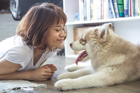 Куче, мъж, жена, отговорност, любов, разбиране, надеждност